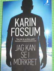 Jag kan se i mörkret Karin Fossum